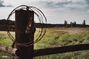 Vzkazky z ranče Žlutava