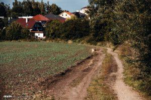 Okruh Morkovice-Slížany